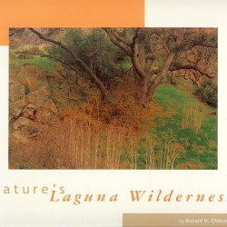 Cover of NLW