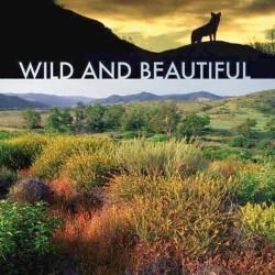 Wild and Beautiful Pix copy